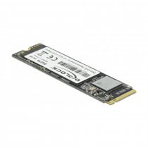 SSD disk 256 GB NVME Delock